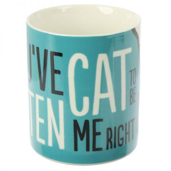 Porcelánový hrnček Simon's Cat - Kitten Slogan 2 - pre milovníkov mačiek