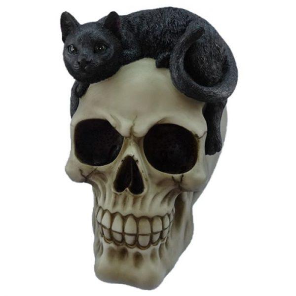 Dekorácia Lebka s čiernou mačkou 1 - pre milovníkov mačiek